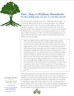 Building Brilliant Boundaries