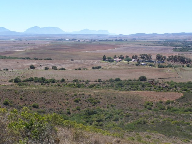Looking from Swartrug towards Riversdale. 026.