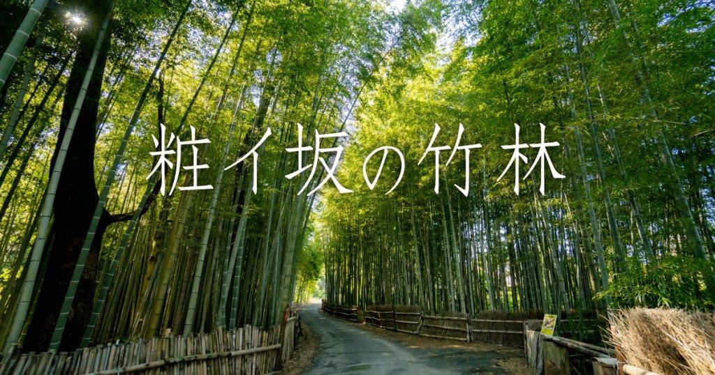 「粧イ坂の竹林」旭公園の西にある素敵な竹林 Chita Film Collestiontita チタフィルムコレクション