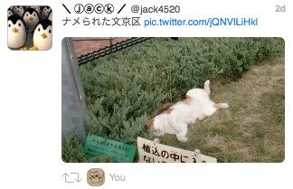Tweetbot for mac 20150606 5