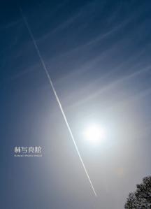 蒼空   飛行機雲   太陽