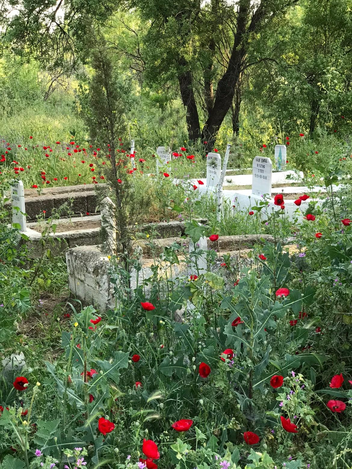 Mezarlık 2