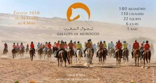 Gallops of Morocco, Du 25février au 4mars 2018