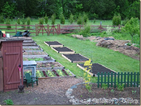 Orchard beds finished May 11 10