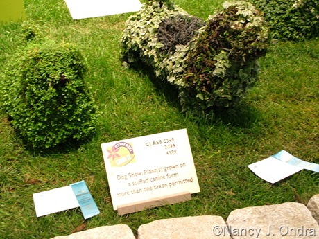 Dog topiaries at Philly Flower Show