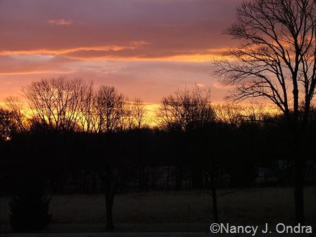Sunrise at Hayefield Feb 10 08