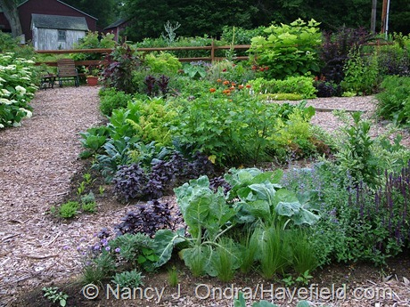The Side Garden at Hayefield (July 2005)