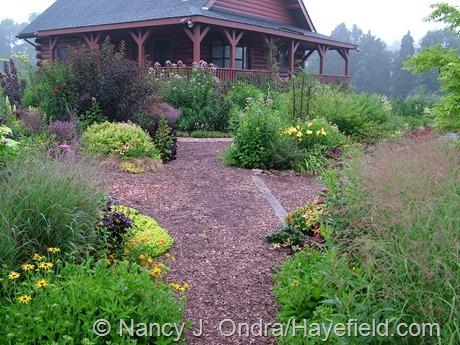 The Diagonal Path at Hayefield (July 2007)