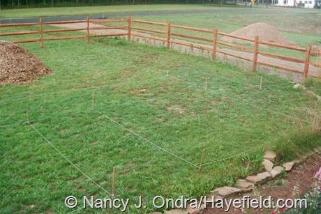 The Front Garden at Hayefield (Summer 2002)