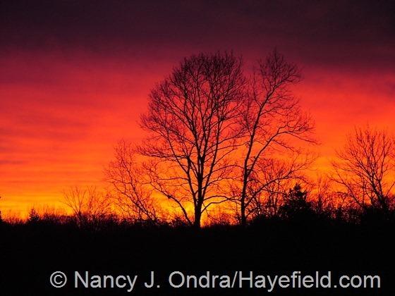 Sunrise at Hayefield - March 2013