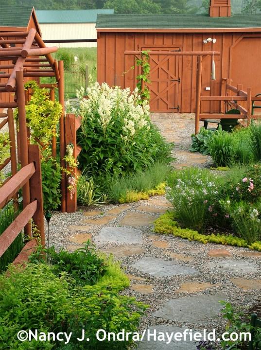 Path to barn June 06 at Hayefield.com