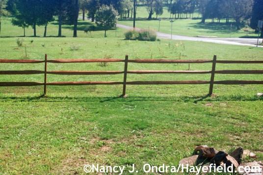Side Garden Summer 2002 at Hayefield.com