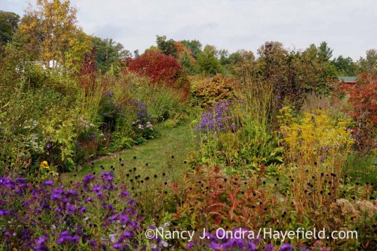 Front Garden in October; Nancy J. Ondra at Hayefield