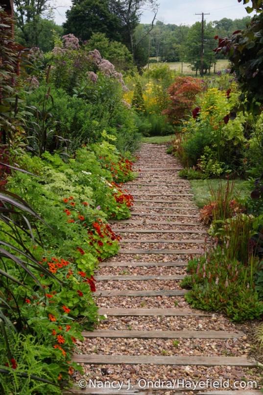 The Front Garden at Hayefield - August 2017 [Nancy J. Ondra/Hayefield.com]