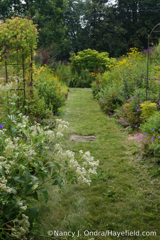 The Side Garden at Hayefield - August 2017 [Nancy J. Ondra/Hayefield.com]