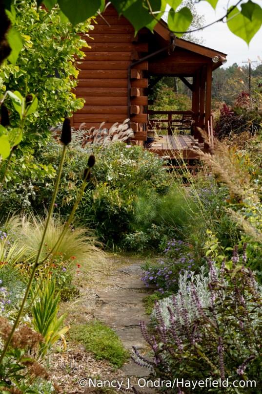 The Courtyard Path at Hayefield [Nancy J. Ondra/Hayefield.com]