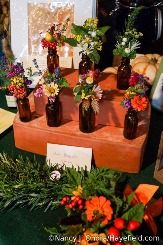 Miniature Bouquets by Nancy J. Ondra of Hayefield.com