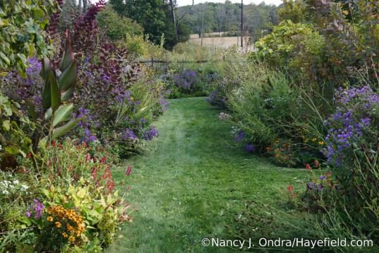 Front Garden Middle Path [Nancy J. Ondra/Hayefield.com]