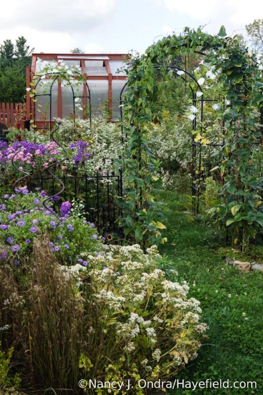 The Happy Garden at Hayefield [Nancy J. Ondra/Hayefield.com]