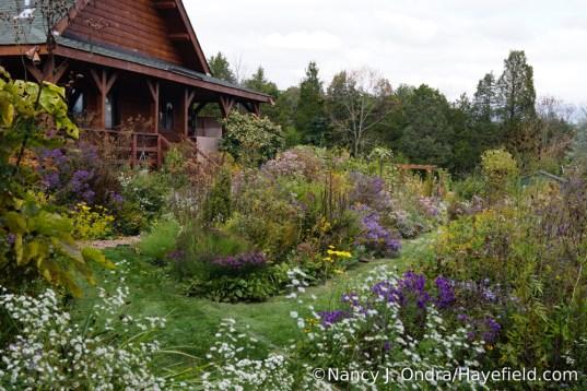 The Side Garden at Hayefield [Nancy J. Ondra/Hayefield.com]