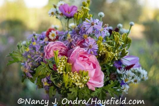 October Bouquet [Nancy J. Ondra/Hayefield.com]