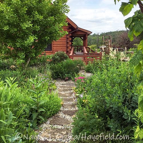 Courtyard path [Nancy J. Ondra/Hayefield.com]