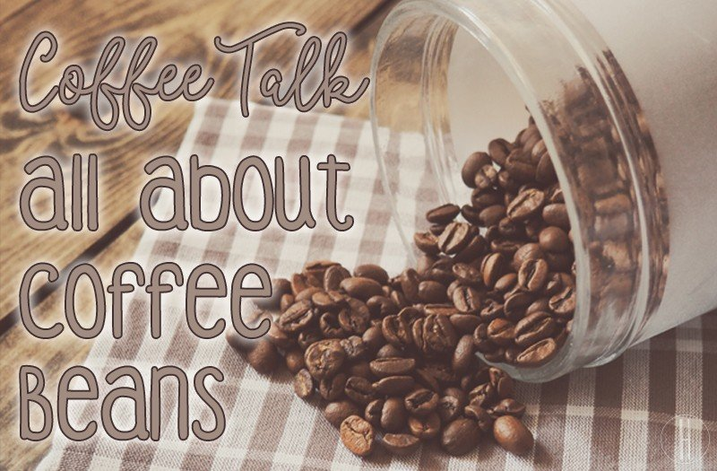 Coffee Talk: All About Coffee Beans   Hayle Olson   www.hayleolson.com