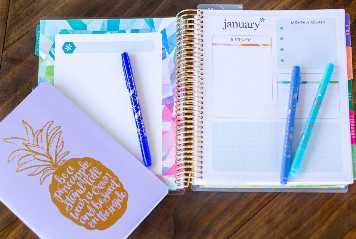 Erin Condren 2020 LifePlanner Monthly Pages