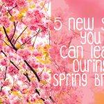 5 New Skills you Can Learn During Spring Break   hayle santella   www.haylesantella.com