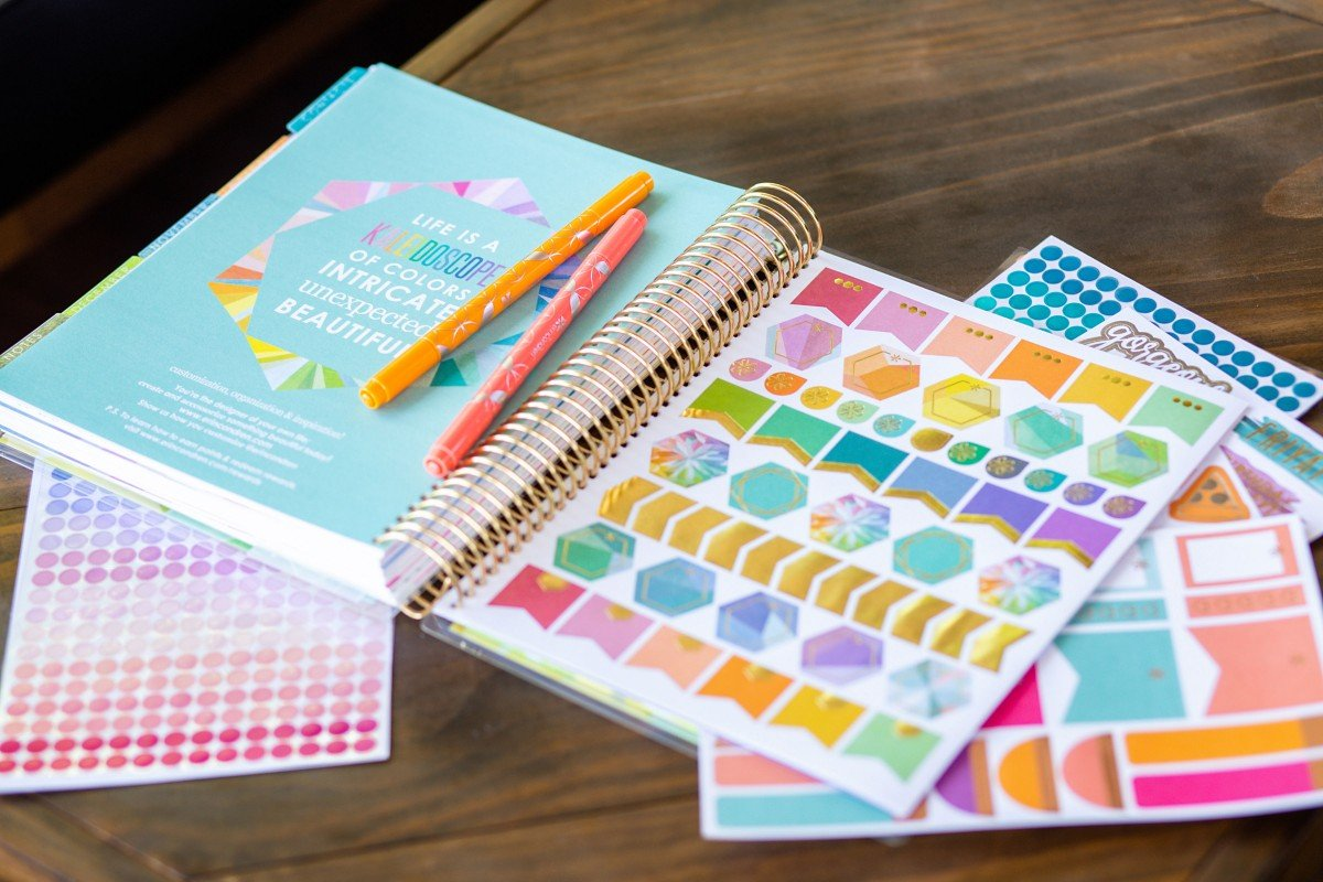 Erin Condren 2020 LifePlanner Stickers