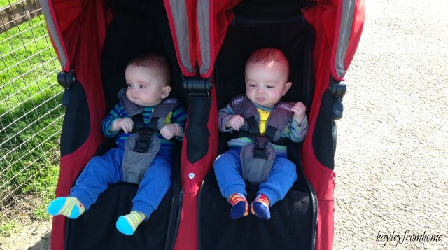 pushchair babies