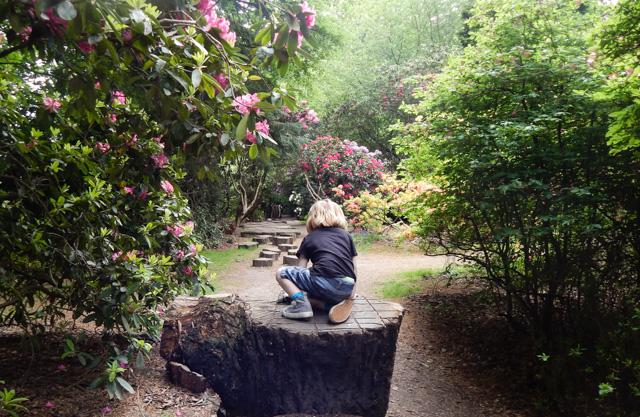Tatton Gardens (10 of 23)