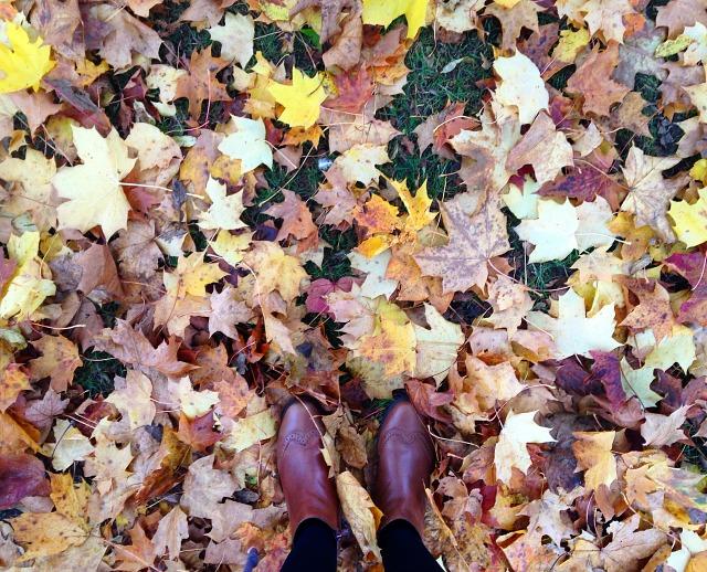 A Little Bit Lately November