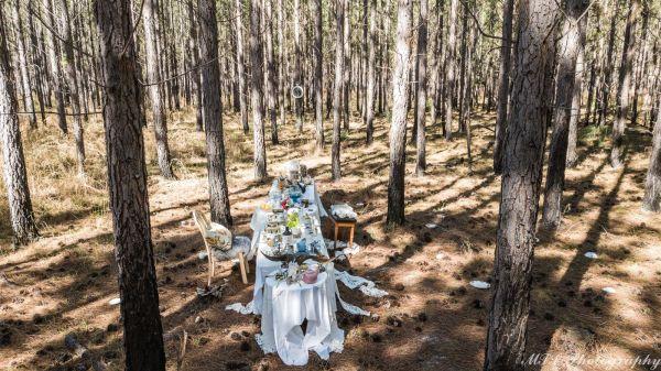 Alice in Wonderland, photoshoot, tea party
