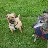 Biggs and Alfie