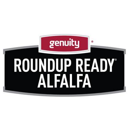Roundup Ready Alfalfa