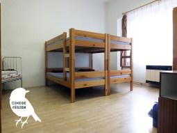 szoba_cinege-2