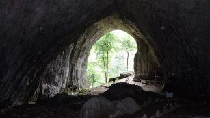 A Mézgedi-barlang
