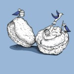 Blue Birds and Scone