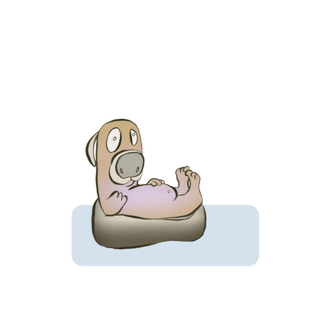 dogtube