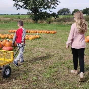 fall activities hazeleyesfall activities hazeleyesmom.commom.com