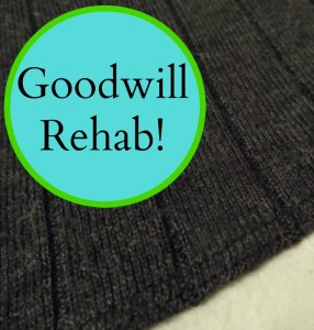 GOODWILL REHAB TITLE