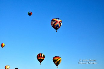 2015-Hot-Air-Balloon-Fest---124