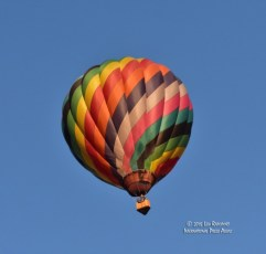 2015-Hot-Air-Balloon-Fest---135