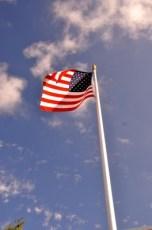American Flag - 08