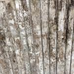 Lead Based Paint On Ceiling