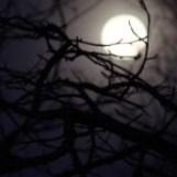 Luna por mrmac04