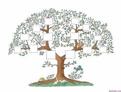 Cmo dibujar un rbol genealgico  hAZtodocom