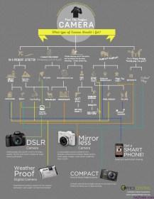 Consejos profesionales para fotógrafos novatos